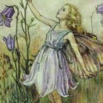 Chichester Copywriter - Bluebell Flower Fairy