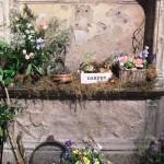 Chichester Copywriter - Festival of Flowers 12