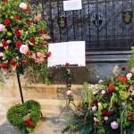 Chichester Copywriter - Festival of Flowers 13