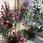 Chichester Copywriter - Festival of Flowers 15