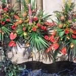 Chichester Copywriter - Festival of Flowers 16