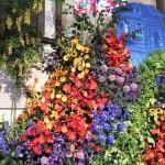 Chichester Copywriter - Festival of Flowers 18
