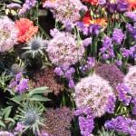 Chichester Copywriter - Festival of Flowers 20