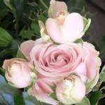 Chichester Copywriter - Festival of Flowers 33