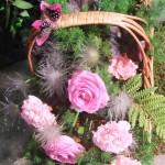 Chichester Copywriter - Festival of Flowers 34
