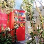 Chichester Copywriter - Festival of Flowers 6
