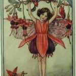 Chichester Copywriter - Fuscia Flower Fairy