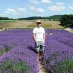 Chichester Copywriter - Lordington Lavender 3