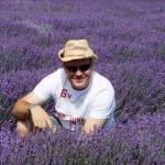Chichester Copywriter - Lordington Lavender 5