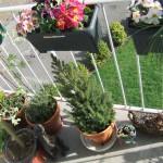 Chichester Copywriter balcony