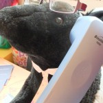 Chichester Copywriter - office tapirs 1