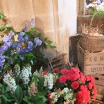 ChichesterFestivalofFlowers2012CCBlog_1